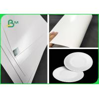 China FDA & SGS 300g Approved PE Coated Paper White FBB Board For Paper Plates on sale