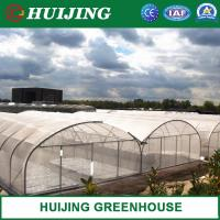Quality 150/200 Micron Plastic Film Agricultural Multi Span Greenhouse Commercial Green House wholesale