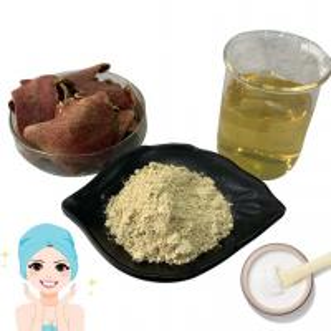 China Anti Mutagen Pomegranate Peel Extract Powder Ellagic Acid 40% For Wound Healing on sale