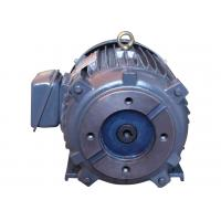 Quality IP68 220KW 300HP Asynchronous Electric Motor IC411 / IC416 Cooling Mode wholesale