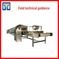 Quality Tunnel Belt Microwave Bread Crumband Protein Powder Drying Machine wholesale