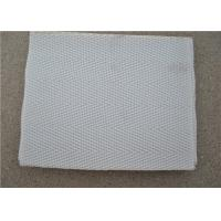 Quality High Temperature Resistant Polyester Mesh Belt With White Used For Sewage wholesale