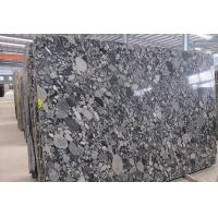 Cheap Black Marinace Stone Slab Countertops Granite Contemporary Kitchen Flooring Wall for sale