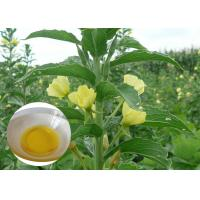 Quality PMS Organic Plant Oils Dietary Supplement Evening Primrose Oil for Capsules wholesale