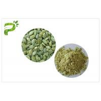 Quality Plant Source Natural Dietary Supplements Vegan Protein 50% 60% Pumpkin Seed Protein Powder wholesale