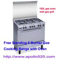 China Freestanding 6 Burners Gas Cooker Oven on sale