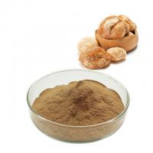 China Brown Yellow Fine Chemical Intermediate Lion'S Mane Mushroom Extract Powder on sale