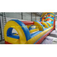 Quality Adult Commercial Inflatable Dry Slide , Hippo Inflatable Water Slide for Water Park Play wholesale