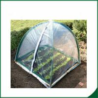 Quality PVC coated Garden tunnel greenhouse Home Garden Mini Greenhouse Warm Houses For Growing Trees wholesale