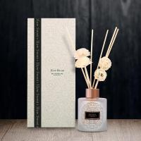 Quality 120ml Glass Bottle Reed Diffuser with color box for Home Fragrance wholesale