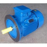 China Y2 Motor with Frame 355m2 (Y2-355M2) on sale