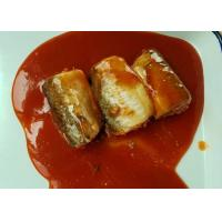 Quality Pacific Mackerel Fish Canned Food In Hot Chili Tomato Sauce ISO Certified wholesale