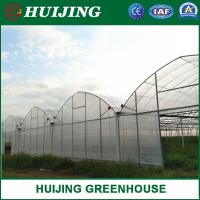 Quality Hot Galvanized Steel Pipes Mutli Span Plastic Film Covering Greenhouse wholesale