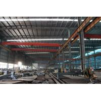 Quality Crab Framed Electric Single Girder Overhead Cranes For General Engineering Application wholesale