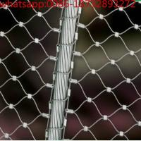 Quality Diamond Rope Mesh for Building Construction/ Stainless Steel Flexible Rope Mesh for Garden from 100% factory wholesale