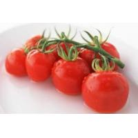Quality Tomato Extract , Lycopene 5% HPLC prevent osteoporosis, lowerblood pressure wholesale