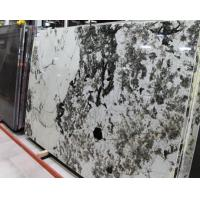 Quality Elegant Aspen White Granite Stone Slab Countertop Stone Vanity Tops wholesale