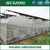 Quality Multi Span Tunnel Plastic Film Greenhouse for Agriculture with Durable Life Span wholesale