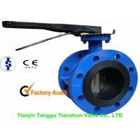 Quality ANSI Large Double Flanged Butterfly Valve Cast Iron With Electric / Manual wholesale