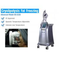Quality Non Surgical Liposuction Cryolipolysis Body Slimming Machine , Vacuum Weight Loss Machine wholesale