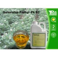 Quality Quizalofop-P-Ethyl 5% EC Grass Selective Herbicides Strong Weed Killer wholesale
