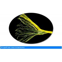 Cheap PP Banana Twine for agriculture use with high Tenacity , UV additive for sale