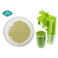 Quality Anti - Inflammatory Dried Celery Powder / Super Green Powder For Weight Loss wholesale
