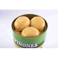 Quality Light Yellow Canning Mushrooms , Whole Button Mushrooms In Jars wholesale