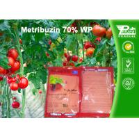 Quality Pre Emergence Herbicides For Potatoes , Tomatoes , Sugar Cane , Alfalfa wholesale