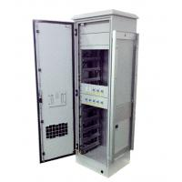 Quality Lithium Iron Battery IP55 Outdoor Cabinet 240V AC Heater With 10 Pieces Battery Modules wholesale