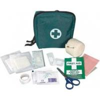 Quality Travel First Aid kit wholesale