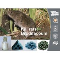Quality Red Columnar Solid Or Grains Rodenticide Products Brodifacoum 0.005% Bait 56073-10-0 wholesale
