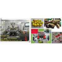 Quality Precisional Electric Pharmaceutical Machine For Food / Softgel Capsule Making Machine wholesale