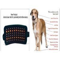Quality Diode Laser Light Therapy For Dogs , 810nm Multifuction Pain Relief Laser Belt wholesale