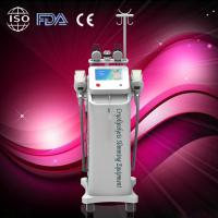 Quality Fat Freeze Cryolipolysis Slimming Machine / Effective Slimming Machine / OEM wholesale