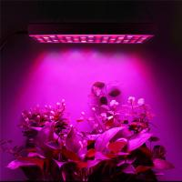 Quality 1000W Greenhouse LED plant grow light / horticulture growing lamp wholesale