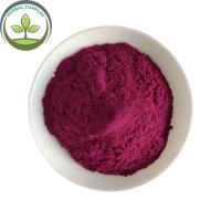 China Antioxidants Food Grade Bilberry Fruit Powder With Best Price on sale