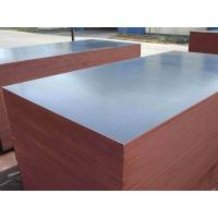 Cheap factory price 18mm melamine plywood film faced plywood poplar/birch plywood for sale
