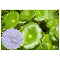 Buy cheap CAS 34540 22 2 Centella Asiatica Extract , Madecassoside Gotu Kola Extract from wholesalers