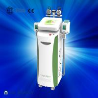 Fat dissolving cryolipolysis machine / vacuum slimming beauty machine with Bottom Price