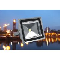 China High Power Outdoor Led Flood Light 10w - 100w White / Rgb Color for Stage on sale