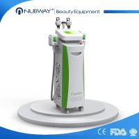 Quality most advanced multifuncitonal 5 handles Silicon handle body slimming fat freezing Cryolipolysis beauty equipment wholesale