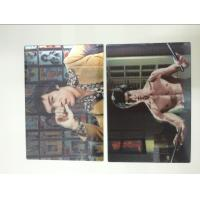 Quality Multicolor Printed 3D Lenticular Postcards , Personalised 3d animated pictures Offset UV Prining wholesale