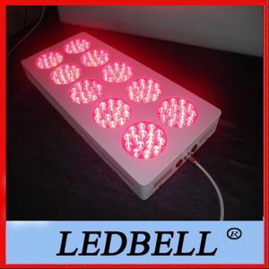 Quality 450w 10 Module Penetrator Led Plant Growing Lights , 150 PCS x3W wholesale