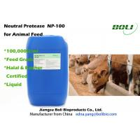 Quality 100000 U / ml Poultry Feed Enzymes , Bacillus Subtilis Neutral Protease Stable Activity wholesale