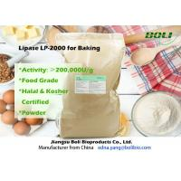 Quality Food Grade Powder Lipase Enzyme LP-2000 High Efficient For Bakery 200000 U / g wholesale