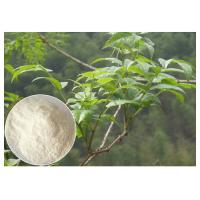 Quality Plant leaf extract powder , anti-alcohol Ampelopsis grossedentata Extract powder dietary supplement wholesale