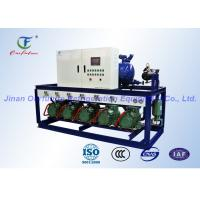 Quality Garlic Cold Storage Bitzer Condensing Unit , Cold Room Compressor Unit wholesale