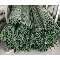 Quality Durable Plant Garden Support Green PE Coated Garden Stake wholesale