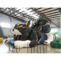 Quality hot inflatable black cat slides,inflatable slide on sale!!! wholesale